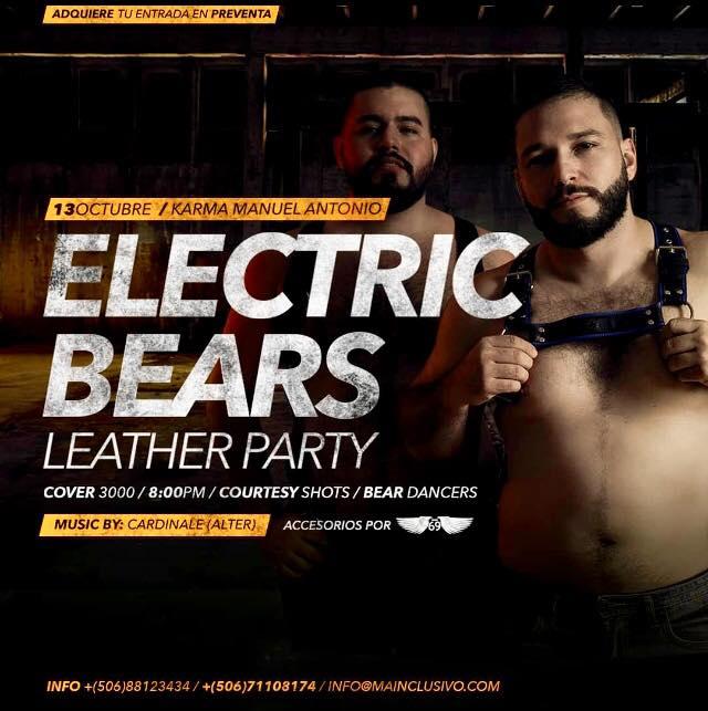 Bear club gay